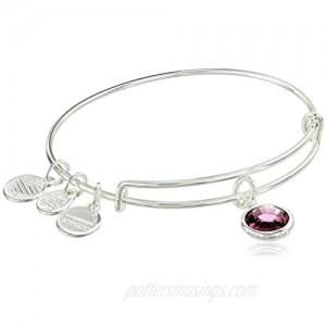 Alex and Ani Women's Swarovski Color Code Bangle February Amethyst Bracelet  Shiny Silver  Expandable