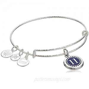 Alex and Ani Color Infusion Numerology Eleven EWB SS Shiny Silver One Size (A20EBNUM11SS)